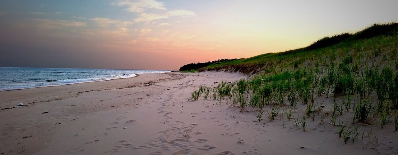 The Best Beaches In The Greater Toronto Area